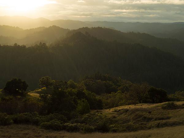 Austin Creek State Recreation Area, Guerneville, Sonoma COunty, California
