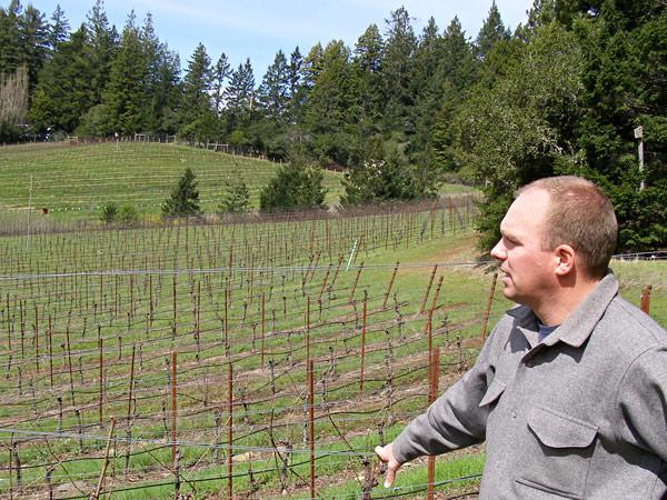 Bohème Wines, Occidental, California