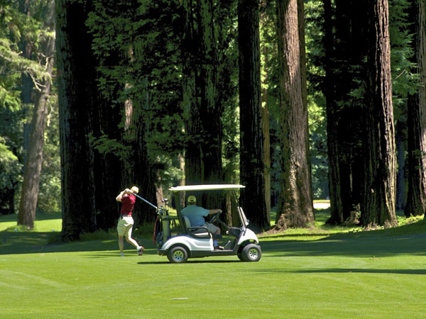 Dine and golf at Northwood Golf Club in MOnte Rio, Sonoma County, California