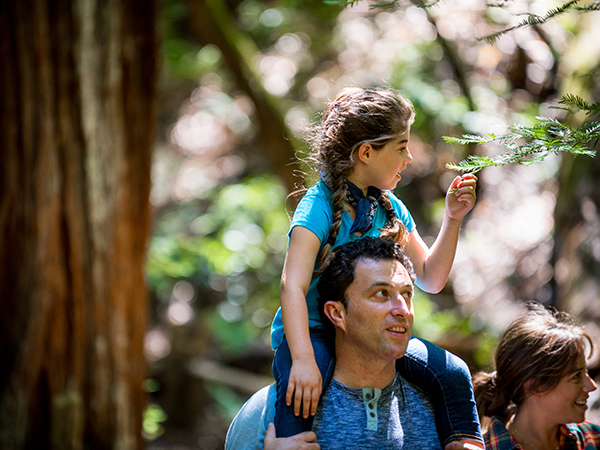 family fun armstrong redwoods state preserve sonoma county guerneville