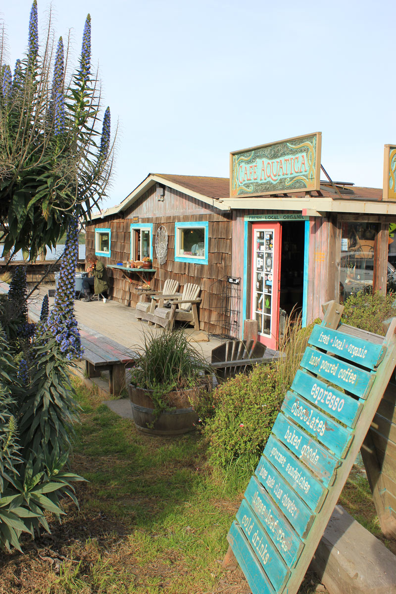 Get your coffee with a coastal view at Cafe Aquatica in Jenner, Sonoma County, California
