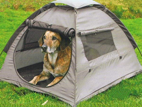 dog camping tent sonoma county pet friendly