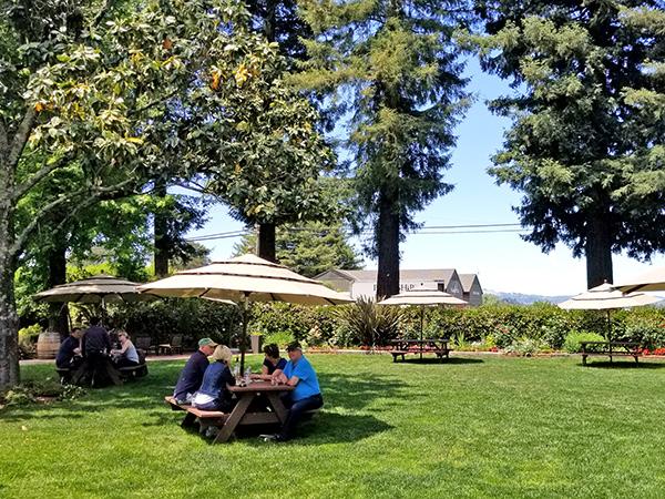 dry creek vineyard healdsburg sonoma county wineries with picnics