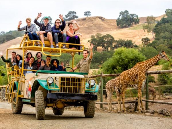 Safari West Wildlife Preserve, Santa Rosa, California