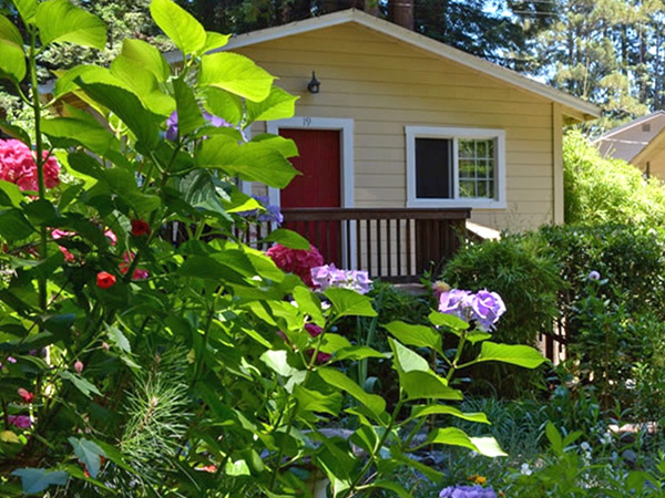 fern grove cottages california redwooods sonoma county