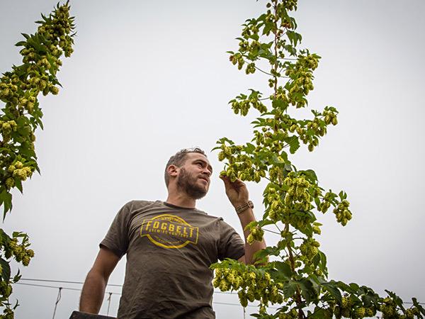 fogbelt brewing company sonoma county