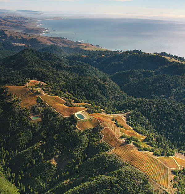 fort ross vineyard and tasting room sonoma county coast