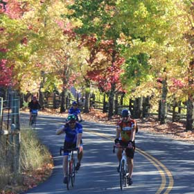 Go on a bicycle tour with Getaway Adventures in Sonoma County, California