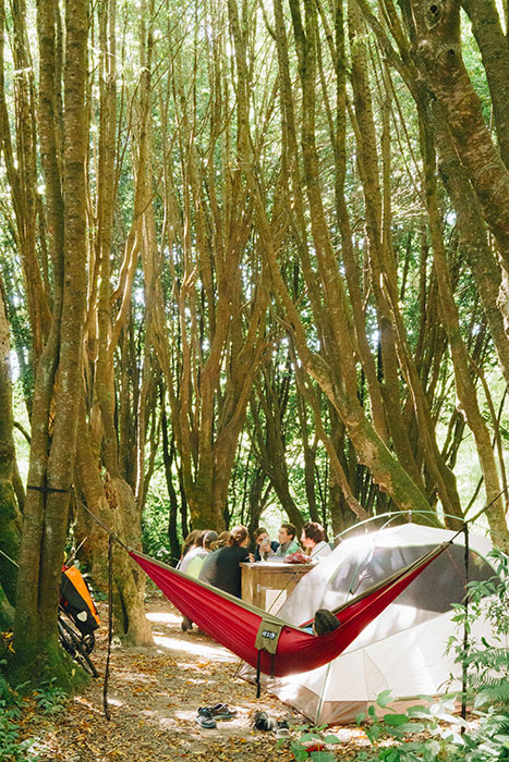 Camping in Gualala State Park, Sonoma County, California