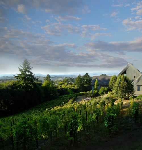 halleck vineyard sebastopol sonoma county winery stay