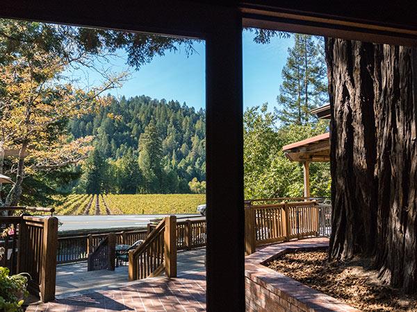 korbel chapagne cellars sonoma county california redwoods