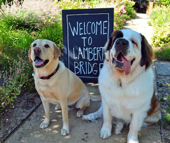 Lambert Bridge Winery, Healdsburg, California