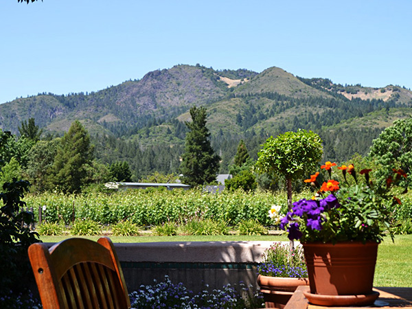 landmark vineyards sonoma county picnic