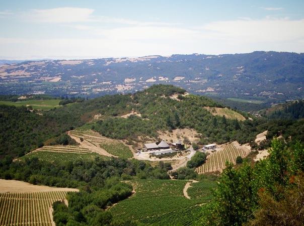 Repris Wines, Sonoma, California