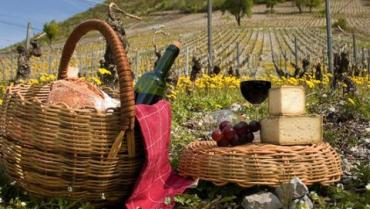 Picnic basket next to vineyard with cheese, wine and grapes