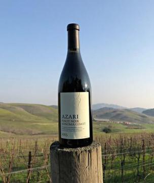 azari vineyards petaluma gap region