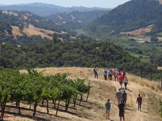 jordan vineyard and winery hike sonoma county