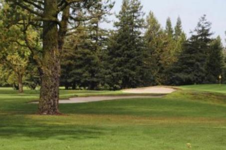 foxtail golf club rohnert park, california