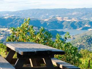 gustafson vineyads and winery healdsburg sonoma county