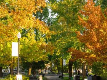 healdsburg plaza sonoma county