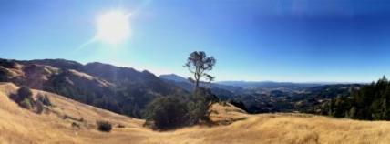 Modini Mayacamas Preserves, Sonoma County
