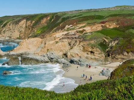 Bodega Head In Bay Sonoma County