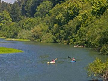 7 great campgrounds for families in sonoma county sonoma for Russian river cabins guerneville