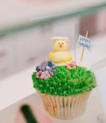 sift cupcakes spring petaluma