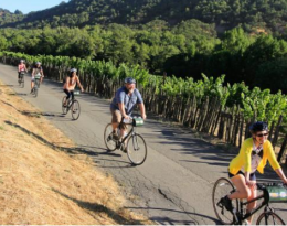 Classic Sonoma Valley Bike Tour
