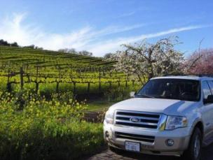 SUV in front of cherry blossoms and vineyards
