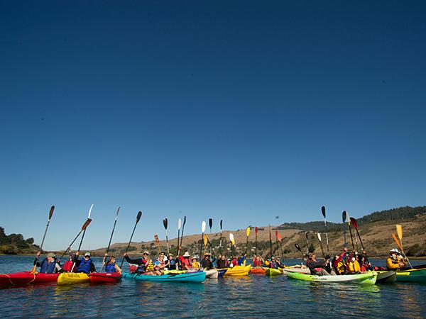 Kayaking the Russian River in Healdsburg, California