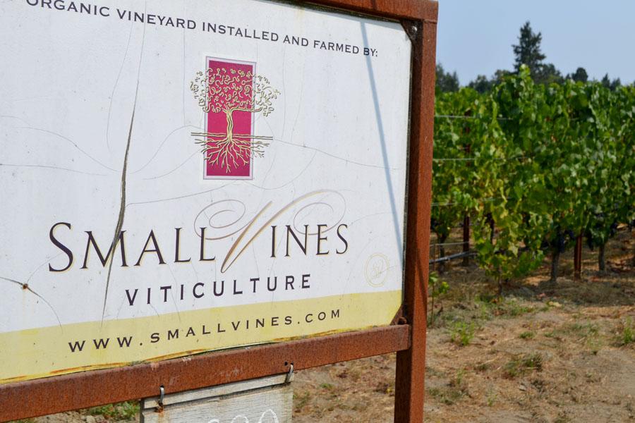 Small Vine Wines, Sebastopol, California