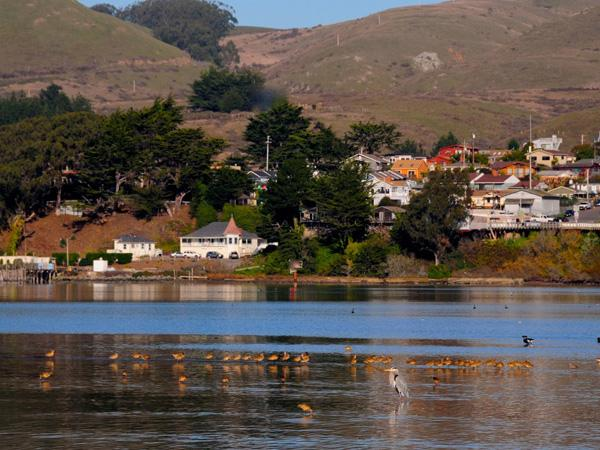 bodega bay spanish girl personals A list of every word of the year selection released by dictionarycom dictionarycom's first word of the year was chosen in 2010.