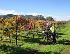 12 Tour Ideas For Exploring Sonoma Wine Country Sonoma