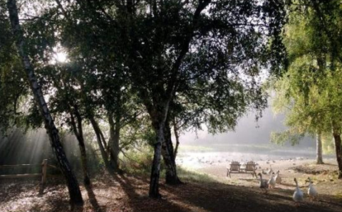 glamping in wine country casini ranch family campground duncans mills sonoma county