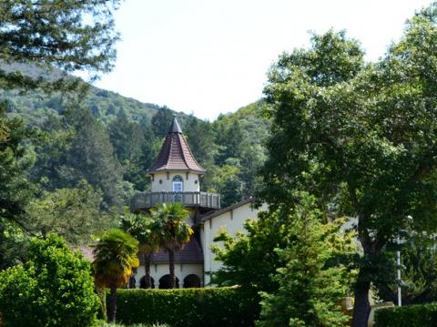 chateau st jean winery kenwood picnics sonoma county