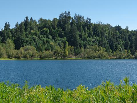 riverfront regional park healdsburg california sonoma county