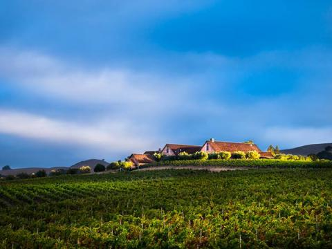 ram's gate winery sonoma county