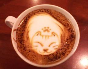 Coffee Cats Cafe Sebastopol