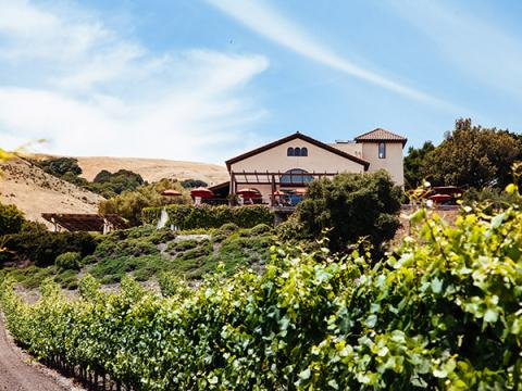 The Most Beautiful Wine Castles of Sonoma gloria ferrer caves vineyads sonoma