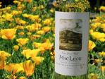 MacLeod Family Vineyards
