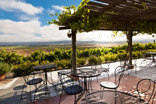Live Music on the Lawn Series at Viansa in Sonoma County, California