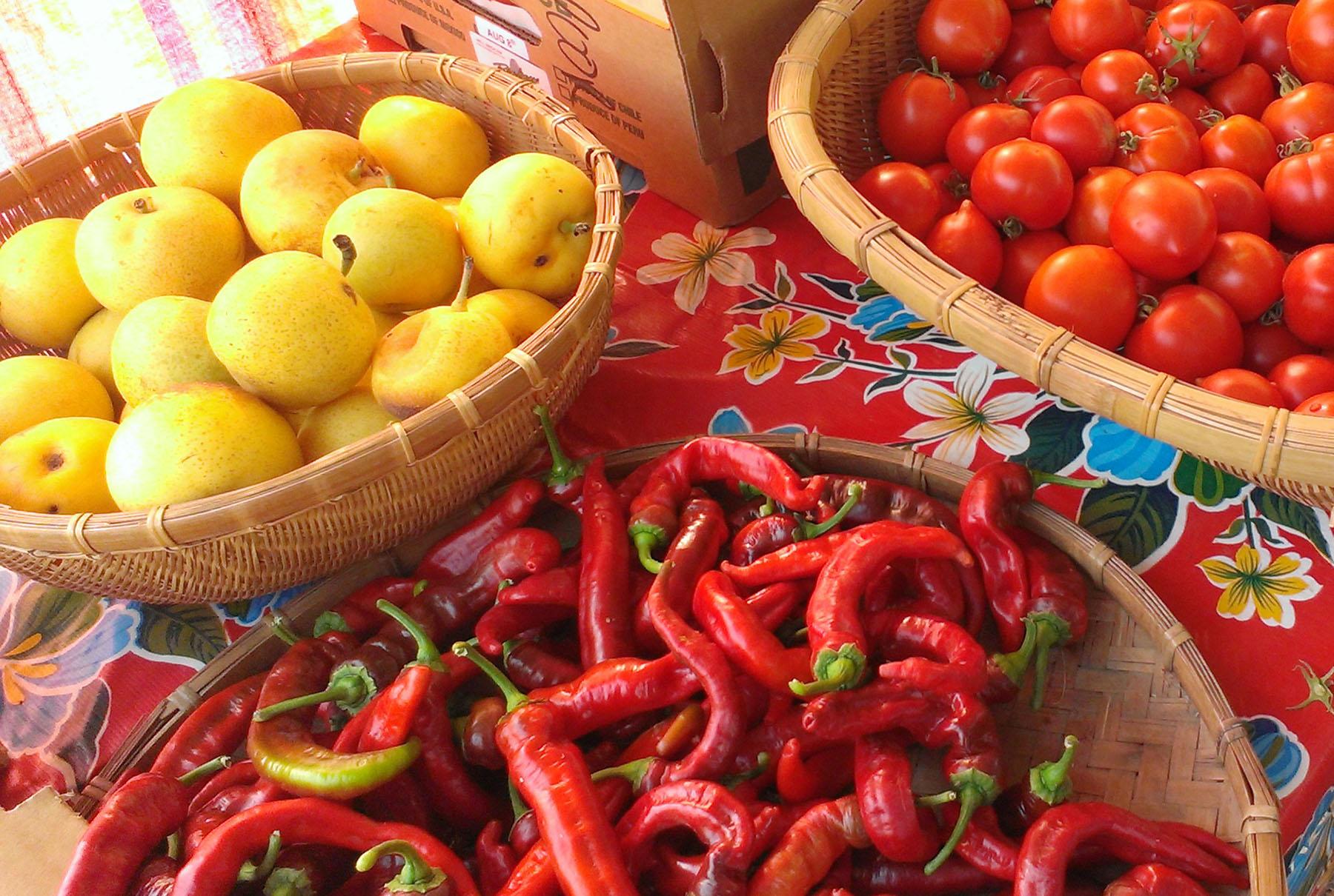 healdsburg farmers markets sonoma county
