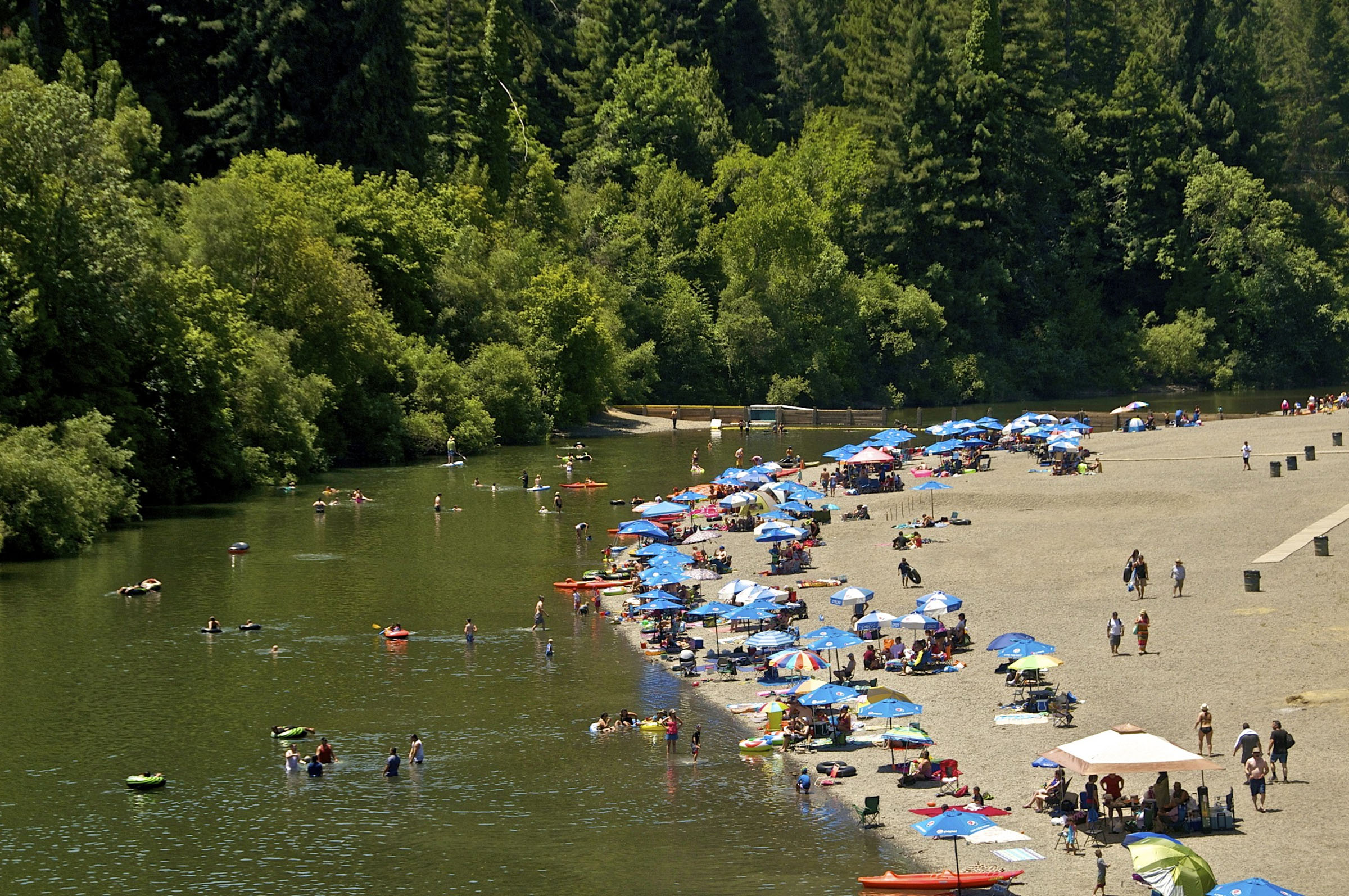 Families playing at Johnson's Beach, Guerneville, Sonoma County, California