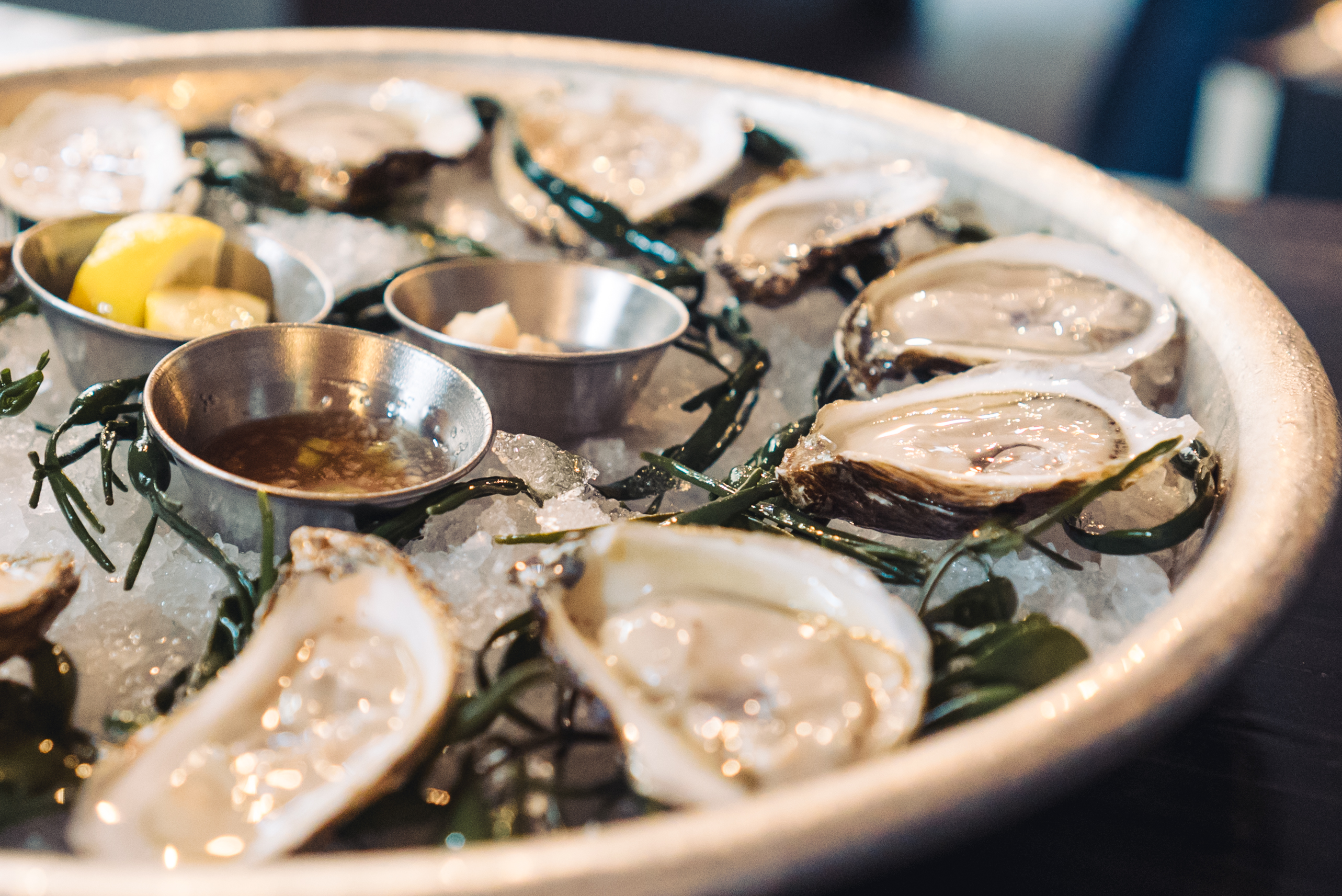 plate of oysters at the Shuckery in Sonoma County