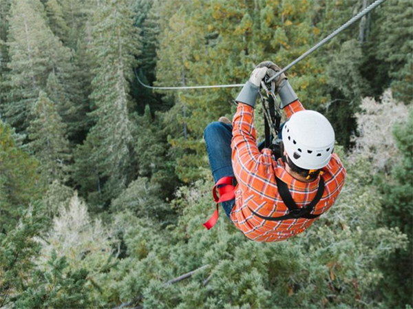 Sonoma Canopy Tours, Occidental, California