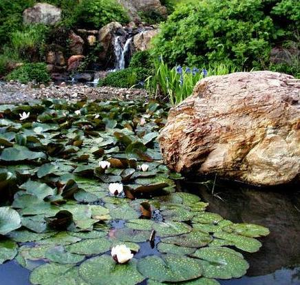 Visit Quarryhill Botanical Garden Sonomacounty Com