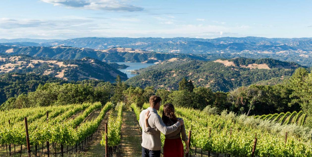 couple looking at Sonoma County vineyard, overlooking Lake Sonoma