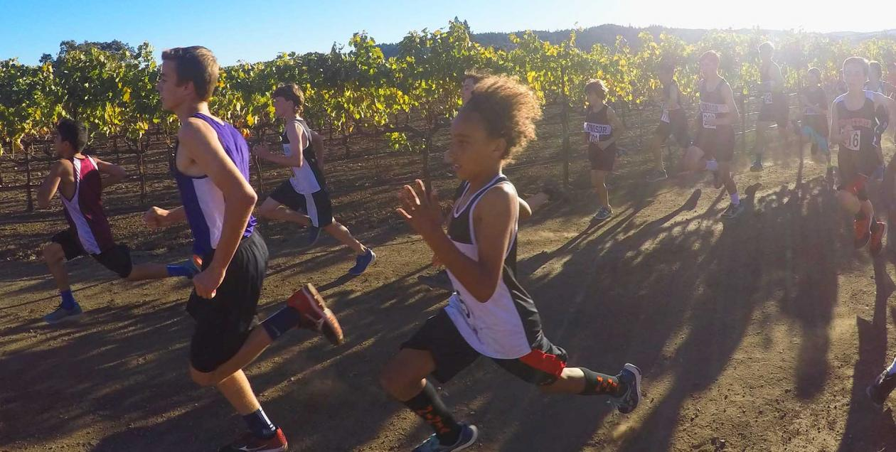 Runners racing past a vineyard in Healdsburg, Sonoma County
