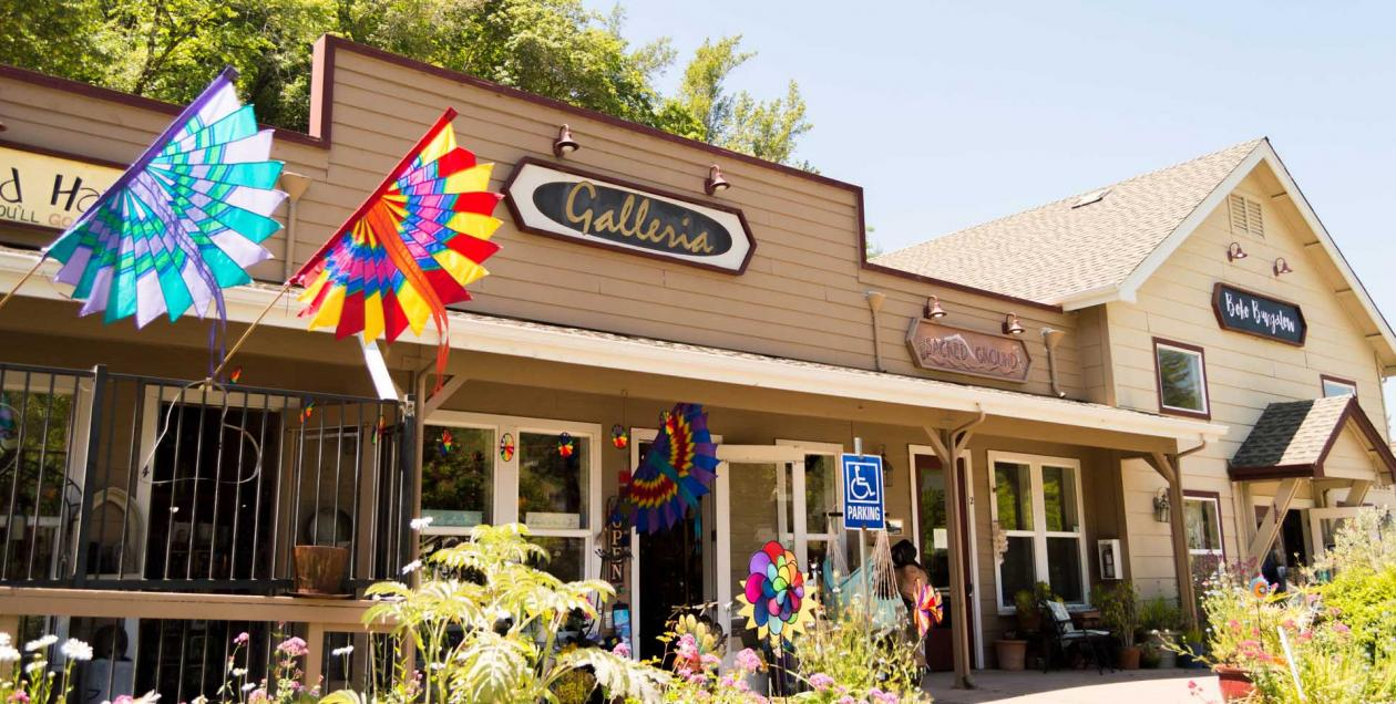 A store in Occidental has a flag waving out front in Sonoma County